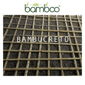 bambucreto