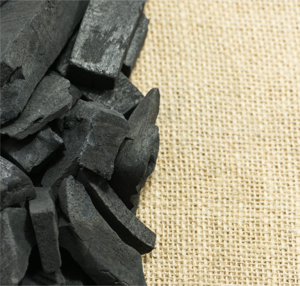 Carbón de Bambú